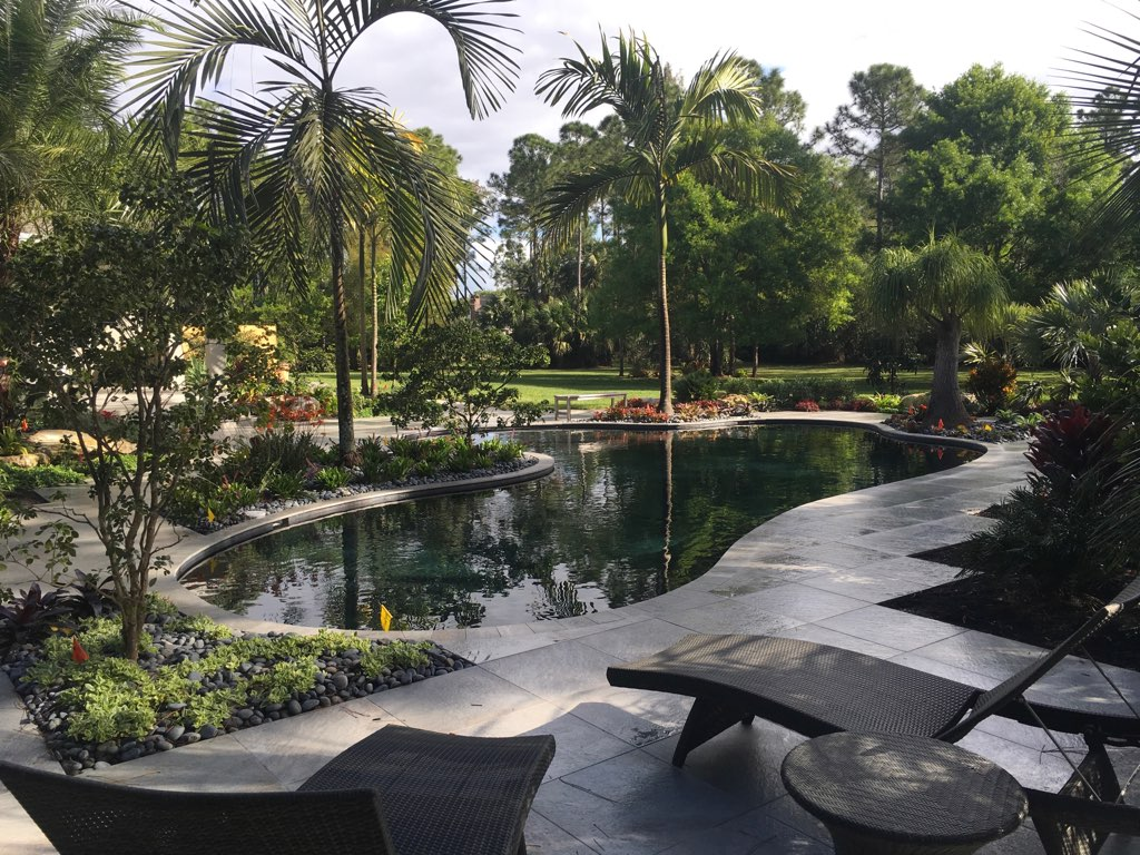 rhr pools organic florida pool with dark interior and lush landscape